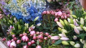 mercato dei fiori di Amsterdam
