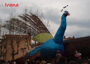 carnevale Muggia, il pavone