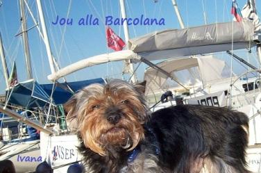 Joy alla Barcolana 2008
