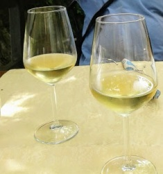 20170811 vino