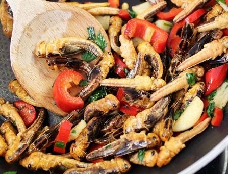 frittura di insetti