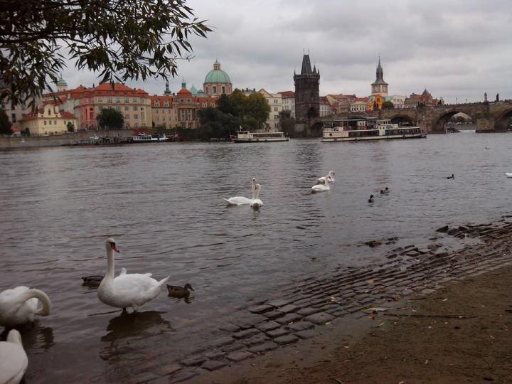 Praga fiume